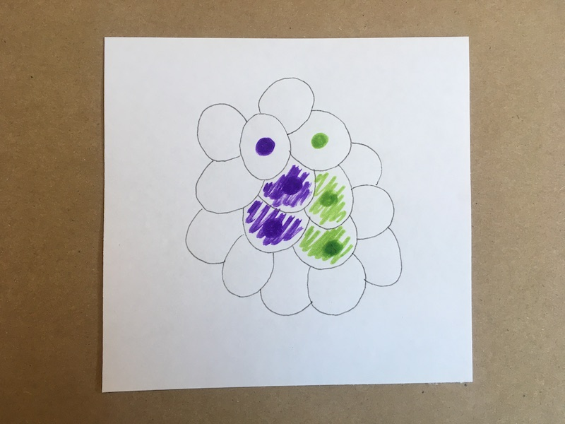 Bunch of circles with some colored in green and some purple